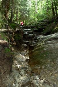 Sterling Pond Trail, Image