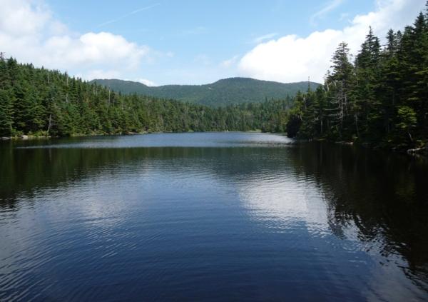 Sterling Pond Image