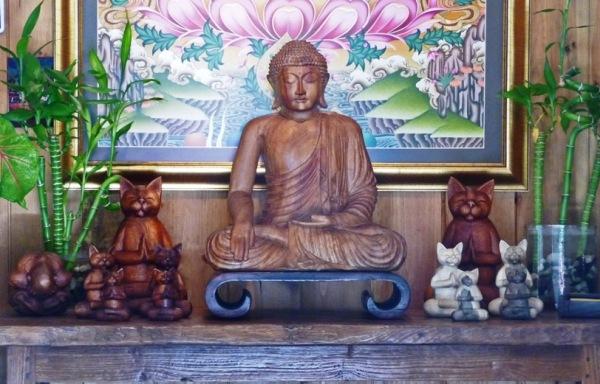 Zen Cat Image