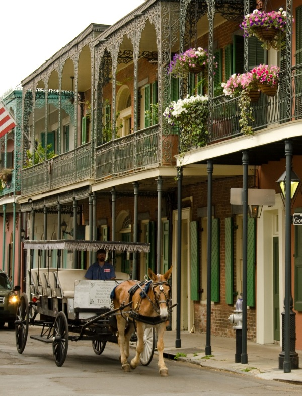 New Orleans French Quarter Image