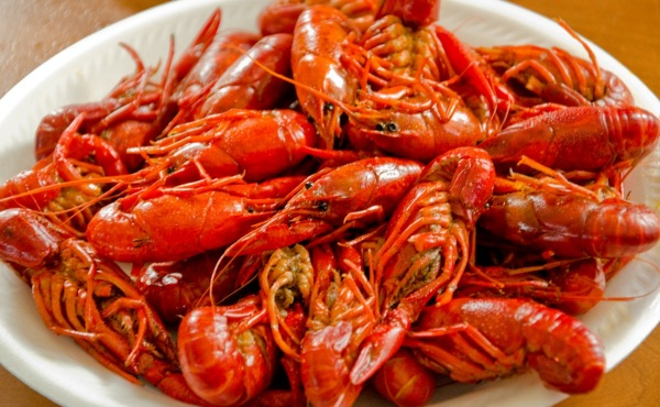 Crawfish, Crawdads,
