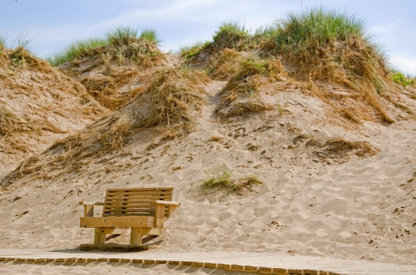 Park Bench at Sleeping Bear Dune National Lakeshore
