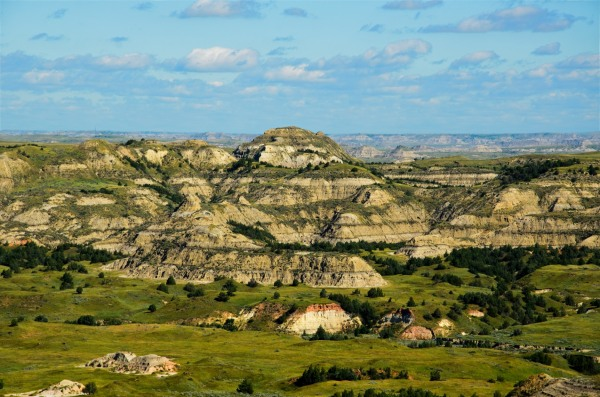 Teddy Roosevelt National Park