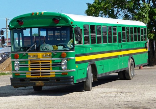 Chicken Bus - Belize