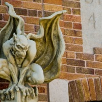Photo of the Day: Gargoyle