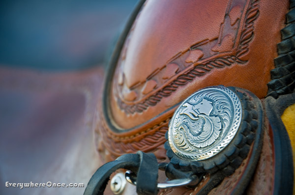 Custom Horse Saddle