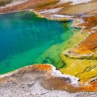 The Colors of Yellowstone National Park