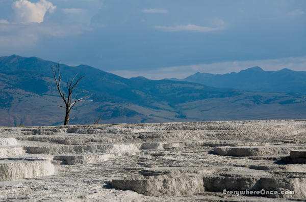 Yellowstone National Park Mammoth Hot Springs Landscape