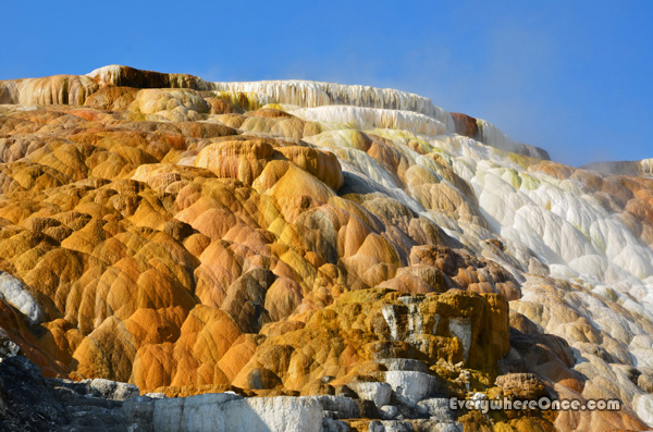 Yellowstone National Park Palette Spring