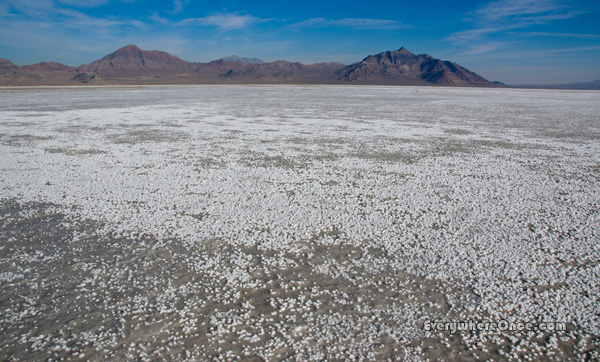 Bonneville Salt Flats Landscape Mountains Utah