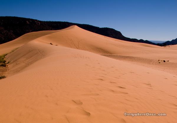 Coral Pink Sand Dunes State Park, Utah, Landscape, Desert