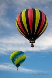 Yuma Balloon Festival Balloons in Flight