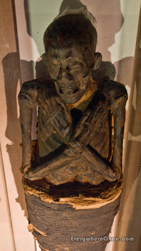 Albany Institute of History and Art Mummy