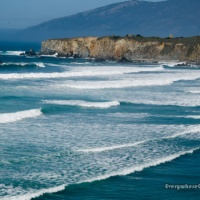 Mighty Big Sur (Part I)