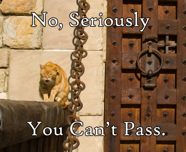 Seriously You Cant Pass