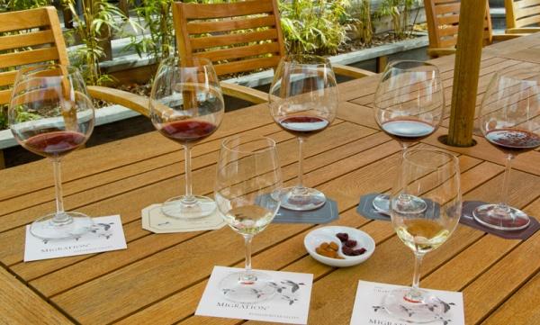 Goldeneye Winery Tasting
