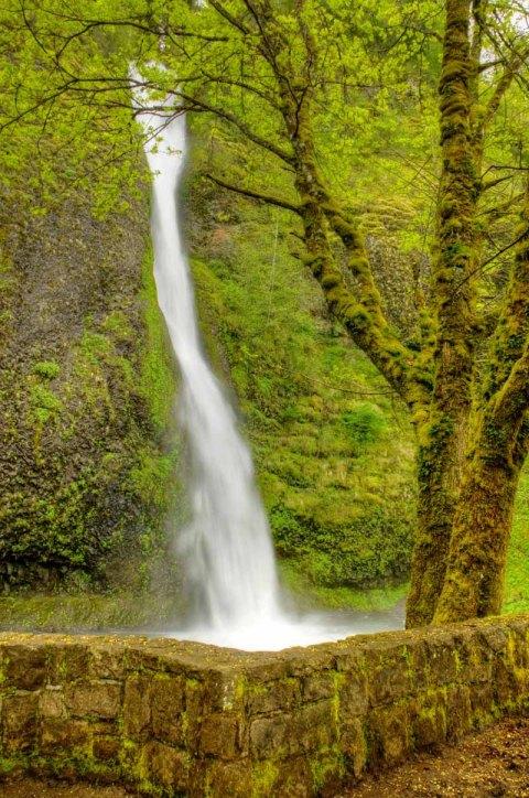 Horsetail Falls, Oregon