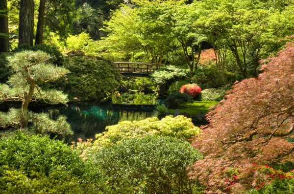 Influenced by Shinto, Buddhist, and Taoist philosophies, the natural backdrop at the Japanese Garden in Portland, OR, is an artfully arranged tableau.