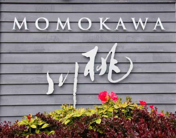 Momokawa Sake