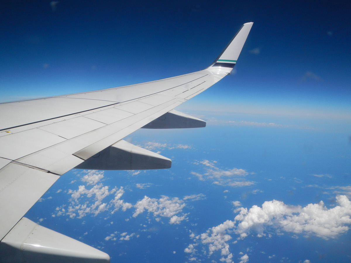 domestic+flights+usa