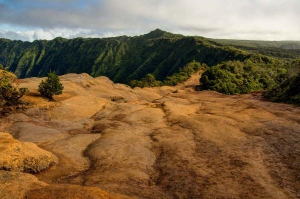 The Pihea Trail Kauai