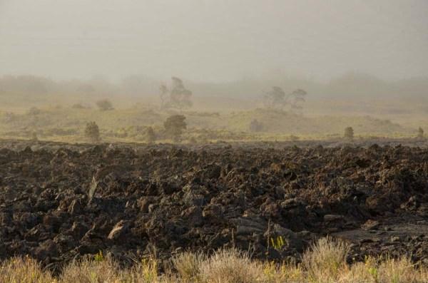 Mist and Volcanic Wasteland
