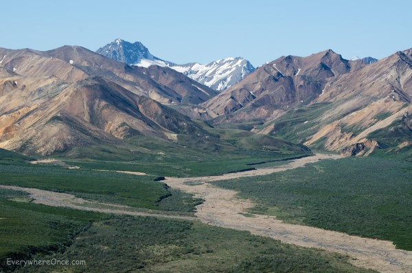 Denali National Park Landscape