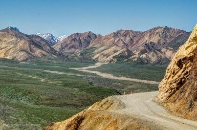 Road through Denali National Park