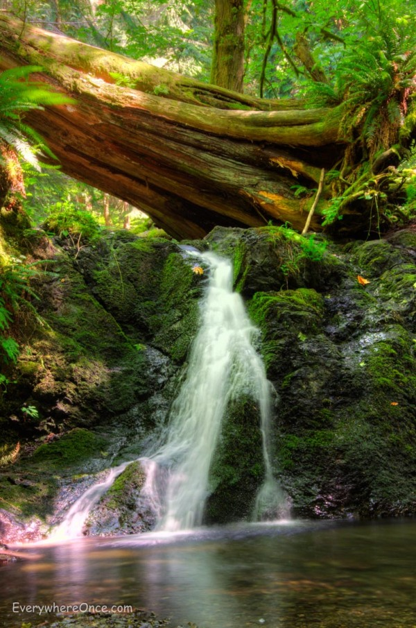 Rustic Falls, Moran State Park, Orcas Island, Washington