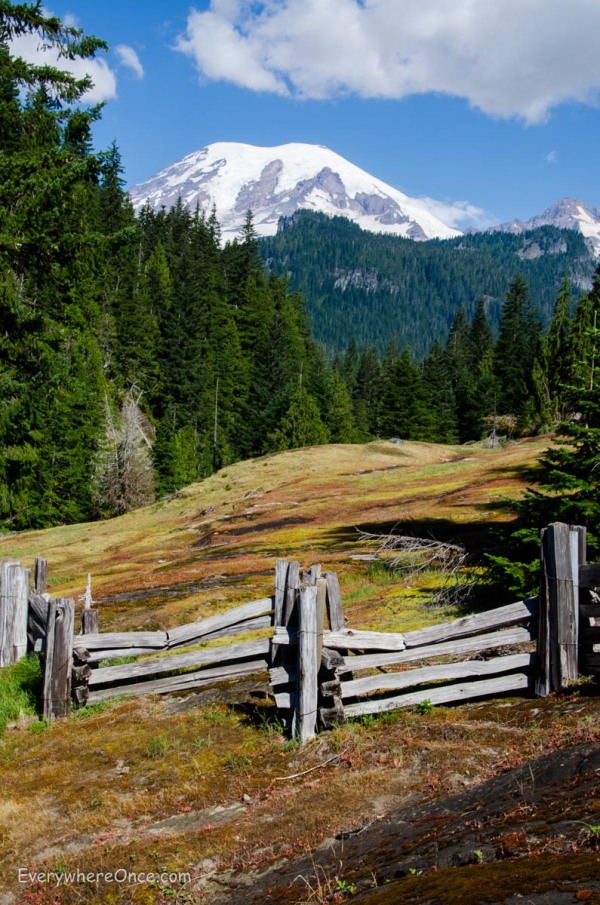 Mount Rainer National Park, Washington