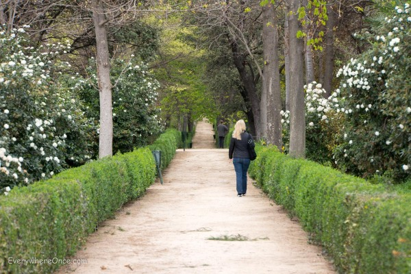 A Walk in Buen Retiro Park
