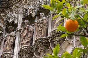 Orange trees at Seville Cathedral