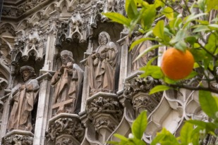 Orange trees at Seville Cathedral
