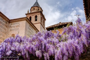 An Alhambra Palace Building with Flowers