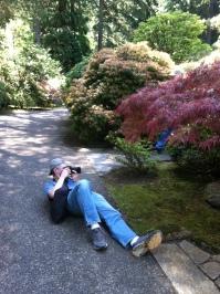 Japanese Tea Garden Portland Oregon 1