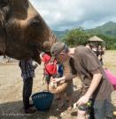 Elephant Nature Park Thailand-26