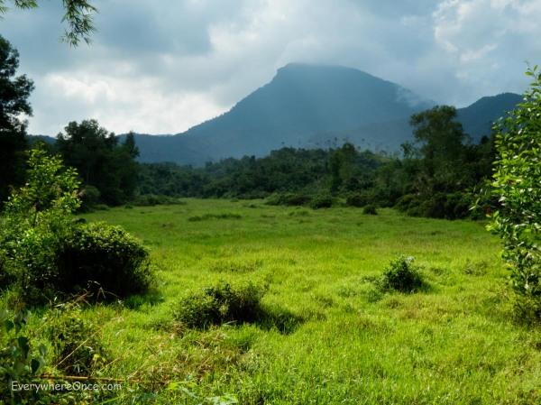 My Son Temple Mountain Area, Vietnam
