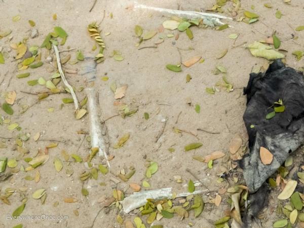Bone Fragments and Clothing at Cambodia Killing Field Choeung Ek
