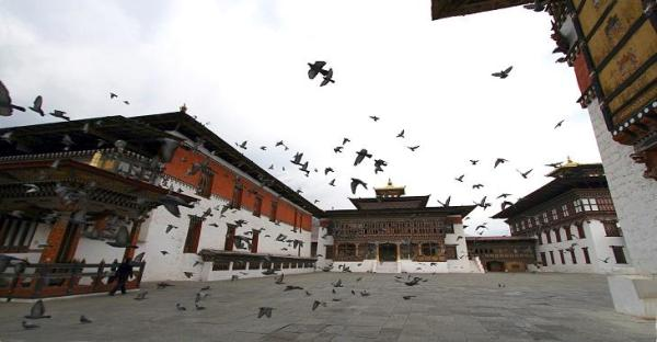 At a minimum price of $200 per person per day, it will be just you and the birds in Bhutan